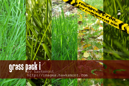 grass1-pack-by-hawksmont.jpg