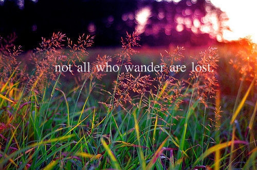 not_all_who_wander_are_lost_quote