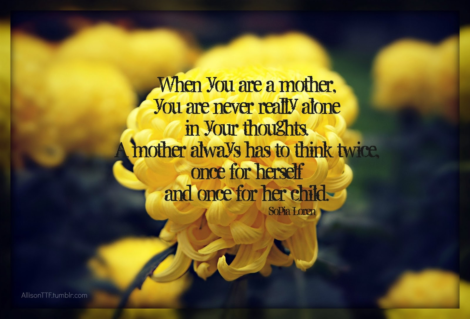 Images Of Flowers With Quotes 2 Quotes Links