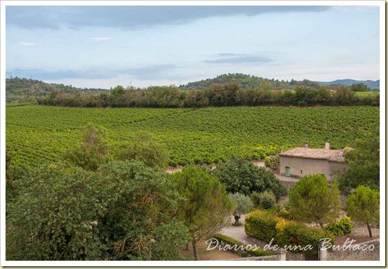 Carcassonne-13