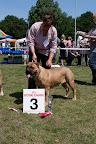 2011-06-02-BMCN-Clubmatch-2011-113547.jpg