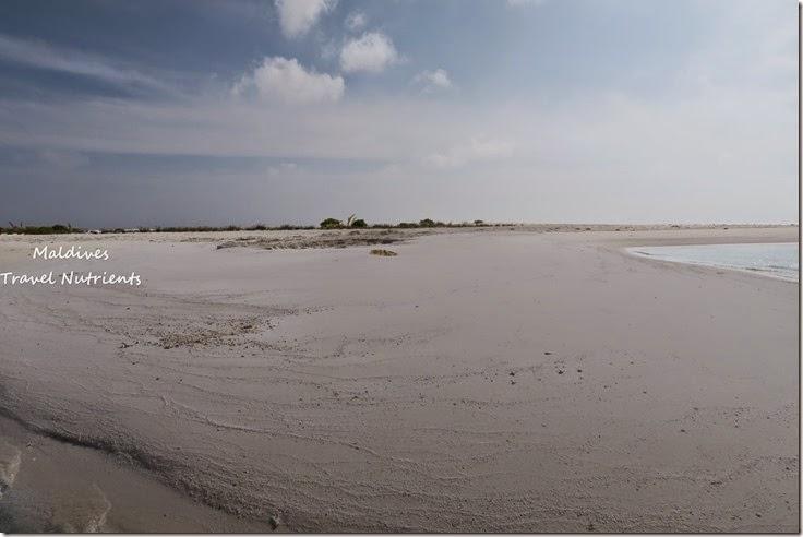 馬爾地夫 野餐島 浮潛 (30)