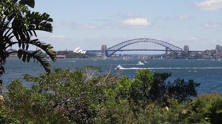 Obiective turistice Sydney: Drumul catre Milk Beach