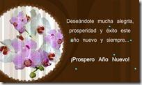 00 - feliz 2013 (23)