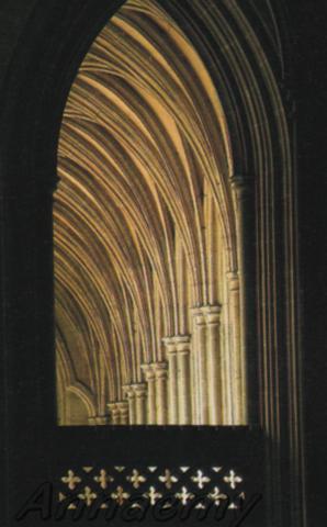 Canterburyint_archiacuti