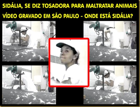 sidalia_tosadora
