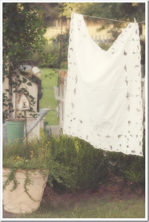 clothesline 038