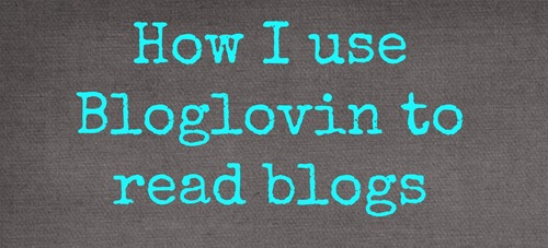 Using The Bloglovin Frame