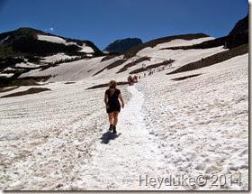 Hidden Lake and Highline Trails 082