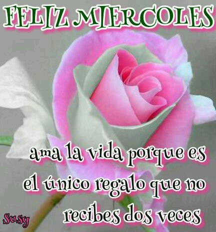 Dilo Con Flores Y Tarjetas Buenos Dias Miércoles