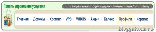 Панель управления сервиса 2Domains
