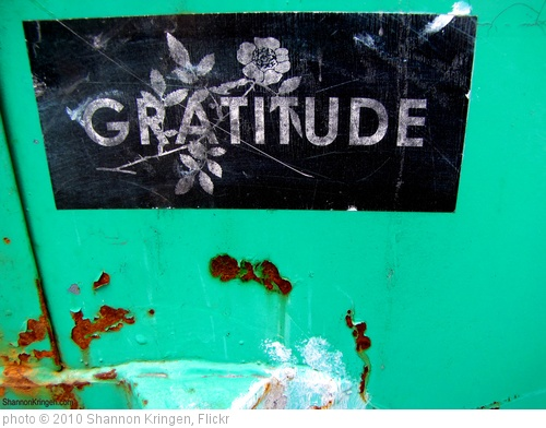 'gratitude and rust' photo (c) 2010, Shannon Kringen - license: http://creativecommons.org/licenses/by-sa/2.0/