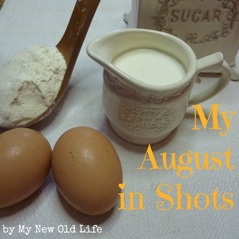 my august in shots