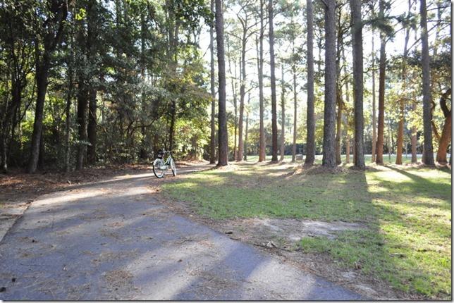 10-3011 bike  woods 236