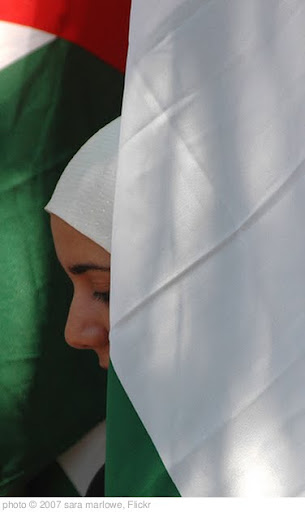 'Palestine demo woman 3' photo (c) 2007, sara marlowe - license: http://creativecommons.org/licenses/by/2.0/
