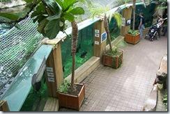 2011.07.26-053 aquariums