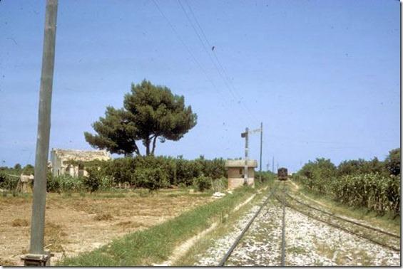 TrainCol (40)
