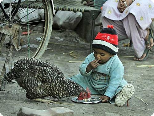 Amritsar, na Índia