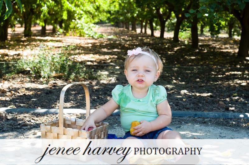 picking fruit-2