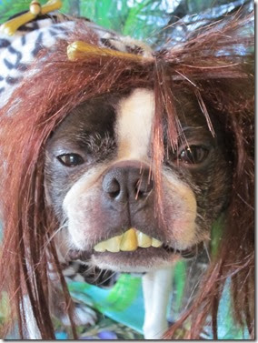 Cavedog