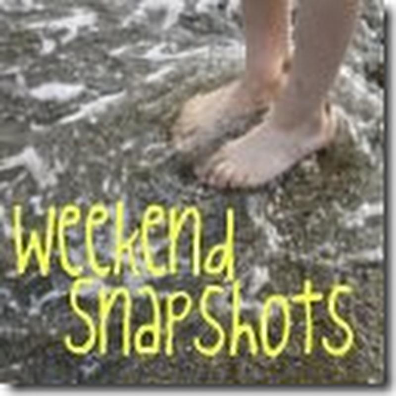 Weekend Snapshots – August 13-14, 2012
