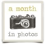 month_in_photos_buttonWEB