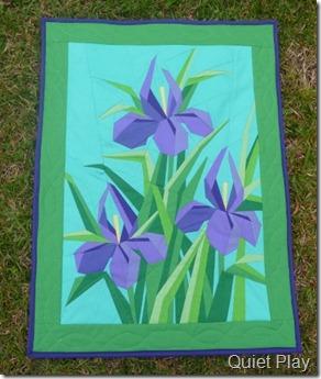 Pretty Irises