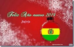 2014 bolivia