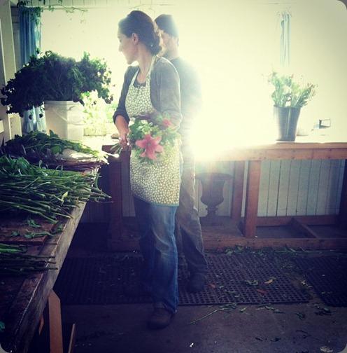 564380_188268277968037_207426759_n floret 64 bouquets per hour