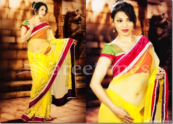Parinidhi_Yellow_Net_Saree