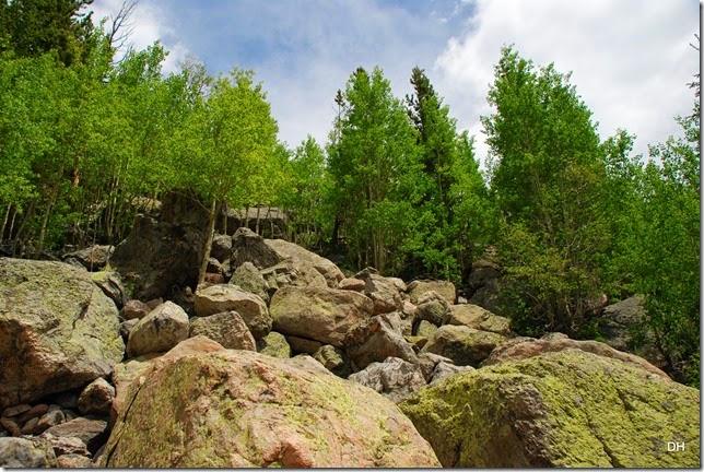 06-22-14 B RMNP Bear Lake (44)