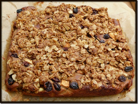 Apple Cinnamon Protein Bar
