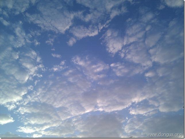 IMG_20111127_070836
