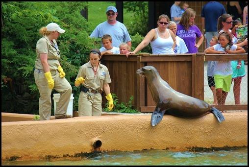 Zoo4 421
