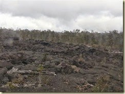 20150118_Lava field (Small)