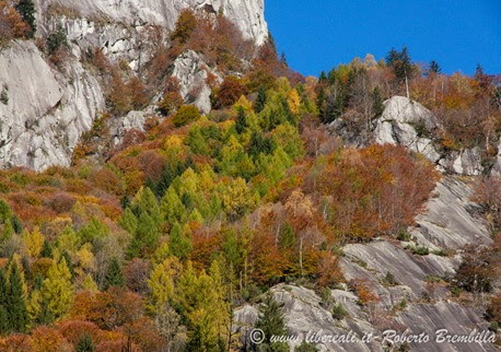 10-2014-11-01_Val di Mello (55)