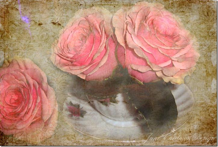 Roses_teacup