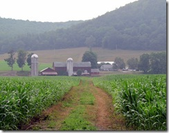 Dan's Family Farm from the Susquehanna Treeline
