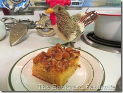 butterscotch chip cake - The Backyard Farmwife