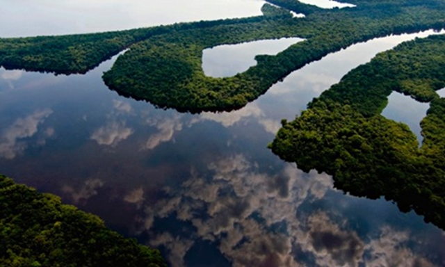 Amazon rainforest kicks up humidity that brings rain to Brazil – it's a giant water pump, but human activity is damaging it. Photo: Fernanda Preto / Getty Images