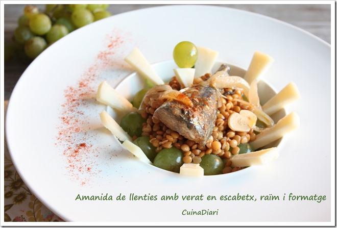 1-1-amanida llenties escabetx raïm-cuinadiari-ppal