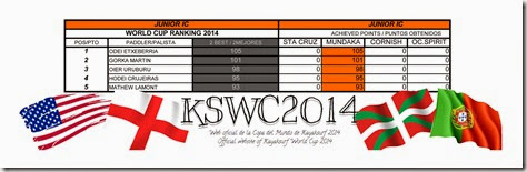 KSWC2014 JUNIOR IC