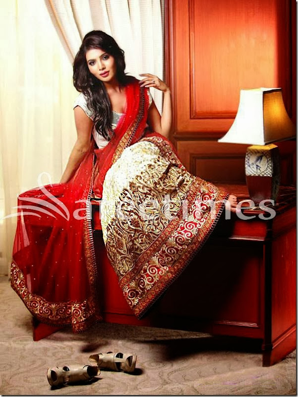 Samantha_Saree_Photoshoot(1)