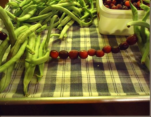 Green Beans 4