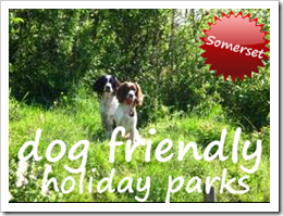Dog Friendly Holiday Parks in Somerset