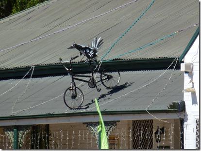 Wellington Bikes Oct 11 016