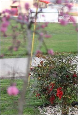 spring 2012 1590154