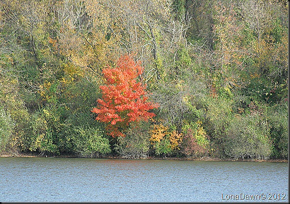 Ross_Lake3