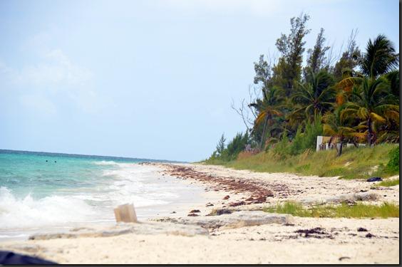 BahamasB 041ed