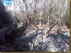 2013-02-05_11-41-29_461